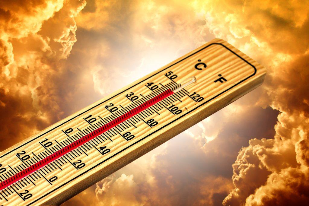 Der Klimawandel führt zu steigenden Temperaturen weltweit