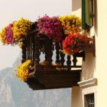 Bepflanzung und Gestaltung von Balkon und Terrasse