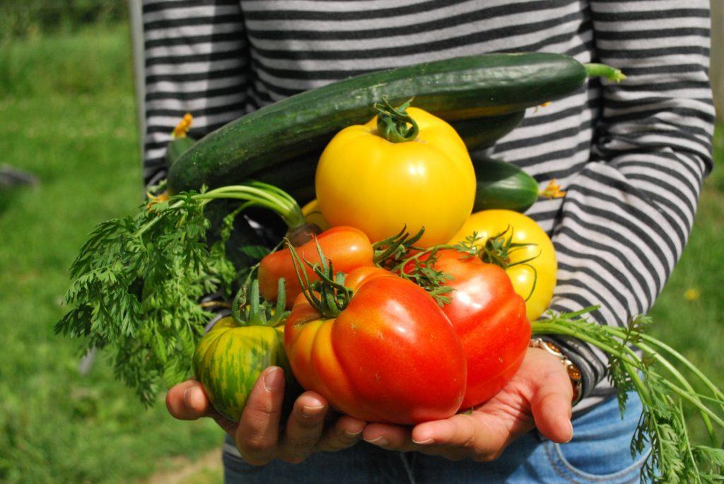 Naschbalkon: reiche Ernte von Obst und Gemüse