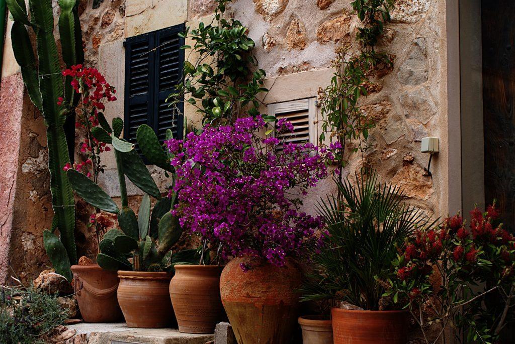 Terrakotta Töpfe für die Gestaltung von Balkon und Terrasse