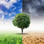Starke Regenfälle, Hitze, Dürre durch den Klimawandel